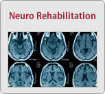 Neuro Rehabilitation Small